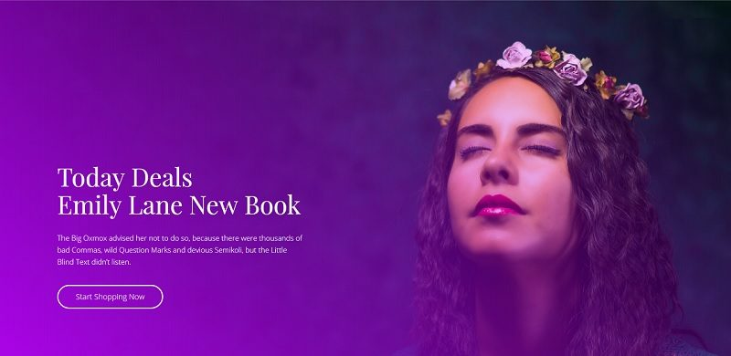 14 Best WordPress Themes For Book Stores & Libraries 2019